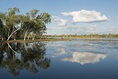 Lake Kununurra Royalty Free Stock Image