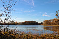 A lake of La Dombes Royalty Free Stock Photos
