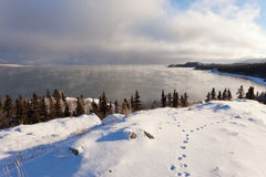 Lake Laberge Yukon ice fogs before freezing over. Steaming Lake Laberge, Yukon Territory, Canada, on icy winter day before freezing over with fox tracks in snow Stock Images