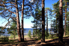 Lake Ladoga. Which is in the north of Russia Royalty Free Stock Photos