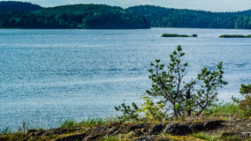 Lake Ladoga. In the Karelia Royalty Free Stock Photography