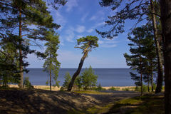 Lake Ladoga, Priozersk, Russia Royalty Free Stock Photo