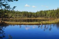Lake in the lake. Lake B.Krasnoe Stock Images