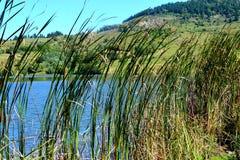 Lake and landcsape in Rosia Montana, Apuseni Mountains Stock Photo