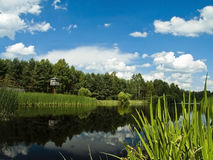 Lake landscape. With blue sky Stock Photography