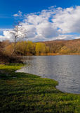 Lake landscape. A landscape of a lake, sky with clouds, forest and green grassy shoreline Royalty Free Stock Images