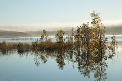Lake landscape with bushes surrounded by water Stock Photography