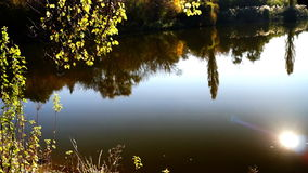 Lake landscape with lens flare and trees mirrored in water. Lake landscape with lens flare, trees mirrored in water and October sun stock video footage