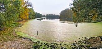 Lake landscape scene Stock Photos