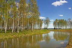 Lake landscape. Stock Photos