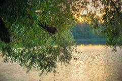 Lake landscape at sunrise royalty free stock photos