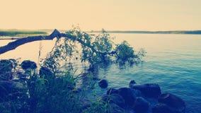 Lake landscape at sunset Royalty Free Stock Photos