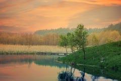 On the lake. Landscape Stock Image
