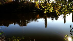 Lake landscape with trees mirrored in water, lens flare and autumn sun. Lake landscape with trees mirrored in water, lens flare and October sun stock footage