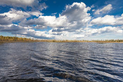 The lake landscape with waves in autumn and blue sky with clouds in windy day Stock Photos