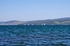 Regatta on the lake, against the backdrop of the mountains. Lake Large is located in the foothills of the Kuznetsk Alatau Stock Photos