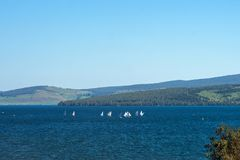 Sports yachts on the lake, with wood, in the foreground. Lake Large is located in the foothills of the Kuznetsk Alatau Stock Images