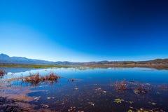 Lake. Lashihai lake, Yunnan Province, China Royalty Free Stock Photos