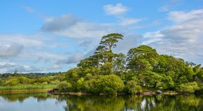 Lake Leane in a sunny morning, in Killarney National Park, County Kerry, Ireland. Royalty Free Stock Photos