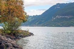 Lake Leman in Switzerland Stock Photo