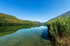 Lake of Levico - Trentino Alto Adige - Italy. Lago di Levico Lake with mountain and forest, Levico Terme, Italy, Europe royalty free stock image