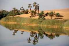 Lake in Libya Royalty Free Stock Photos