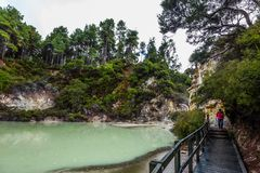 Lake with light green opaque water. The magic country is Wai - O - Tapu. New Zealand, North Island. The concept of active and phototourism royalty free stock photos