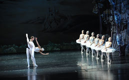 The lake is like a mirror-The most beautiful white swan-ballet Swan Lake. In December 20, 2014, Russia's St Petersburg Ballet Theater in Jiangxi Nanchang Stock Images