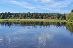 Lake lipno. Lipno lake at Austrian border with forest and trees Stock Images