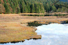 Lake of Lispach in Vosges Royalty Free Stock Photo