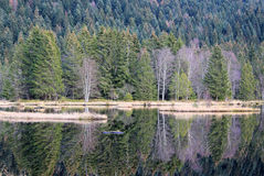 Lake of Lispach in Vosges Stock Photography