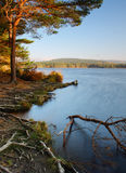 Lake - Loch Garten Royalty Free Stock Photos