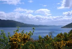 lake Loch Ness Royaltyfri Bild