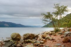 lake Loch Ness scotland Royaltyfri Fotografi