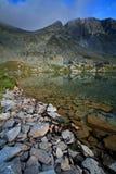 lake lodowaty fotografia royalty free