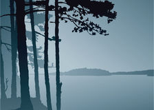Lake Lookout. Silhouette of a misty view across a northern lake Stock Images