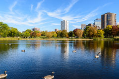Lake in Loring Park, Minneapolis Royalty Free Stock Photos