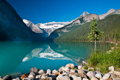 Lake Louise Arkivbilder
