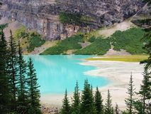 Lake Louise 免版税库存图片