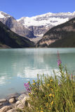 Lake Louise Royaltyfri Bild