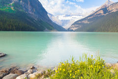 Lake Louise aberta västra Kanada Royaltyfria Bilder