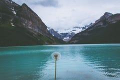 Lake Louise, Alberta, Canada Immagini Stock Libere da Diritti