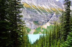 Lake Louise in Autumn, Canadian Rockies. Alberta,Canada royalty free stock images