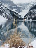 Lake Louise im Winter Stockfoto