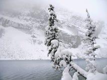 Lake Louise in inverno fotografie stock