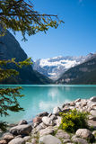 Lake Louise och glaciär Royaltyfri Fotografi