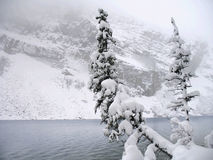 Lake Louise in Winter. A wintry day in November on Lake Louise, Alberta stock photos