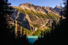 Lake- Louiselärchenjahreszeit, Banff Lizenzfreies Stockfoto