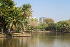Lake at the Lumpini Park in Bangkok Stock Photos
