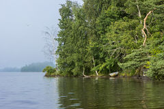 Lake and lush forest in Finland in summer Stock Image